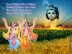 ISKCON Hare Krishna HD
