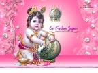 Sri Krishna Jayanti
