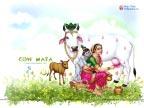 Cow Mata