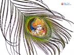 Krishna Mor Pankh