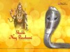 Shubh Nag Panchami