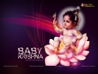 Cute Krishna Baby