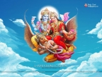 Laxmi Vishnu Garuda