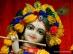 ISKCON Temple Krishna