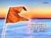 Bhagwa Dhwaj