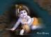God Krishna