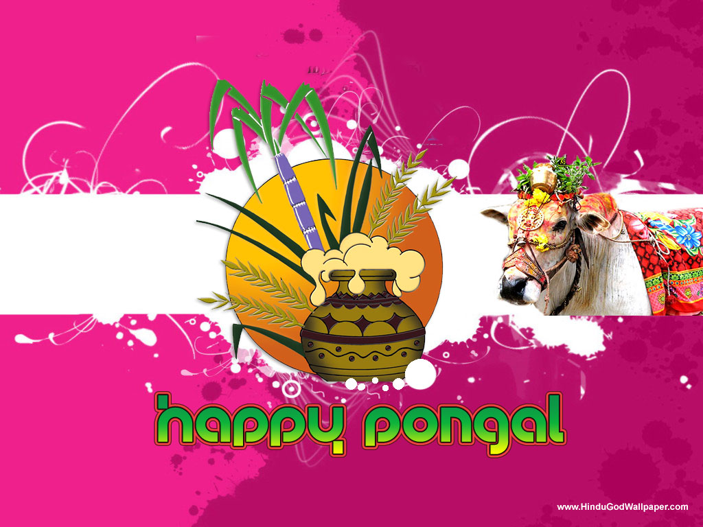 Pongal Greetings Wallpapers With Wishes Free Download