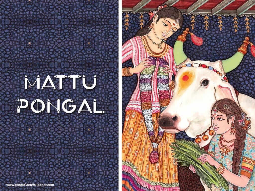 mattu pongal wallpaper