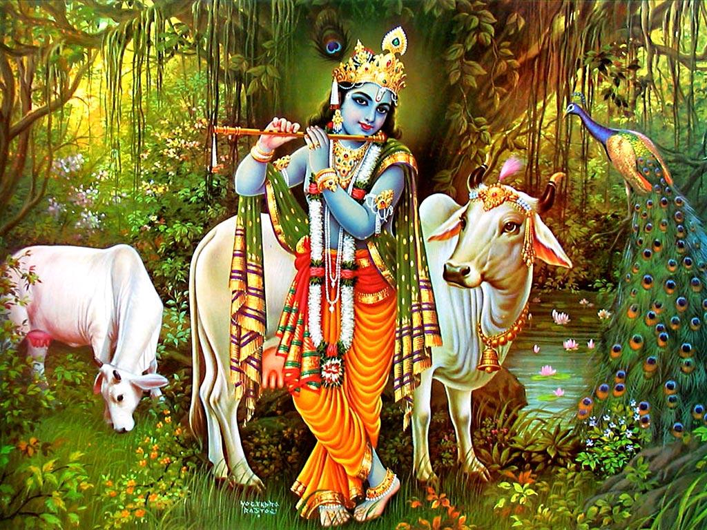 God Krishna With Flute Cow Wallpaper Download