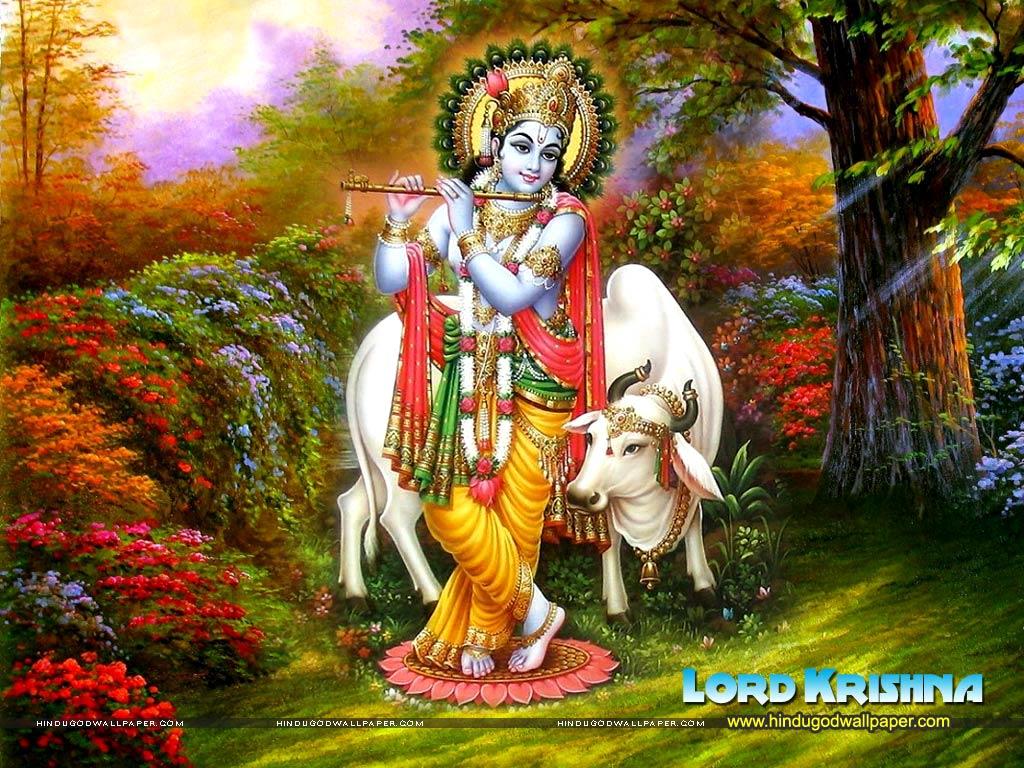 Lord Krishna full size desktop wallpaper | Great Udaipur
