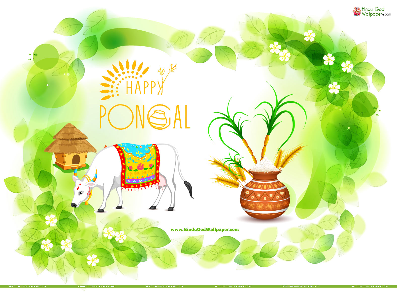 Pongal Greetings Wallpapers With Wishes Quotes