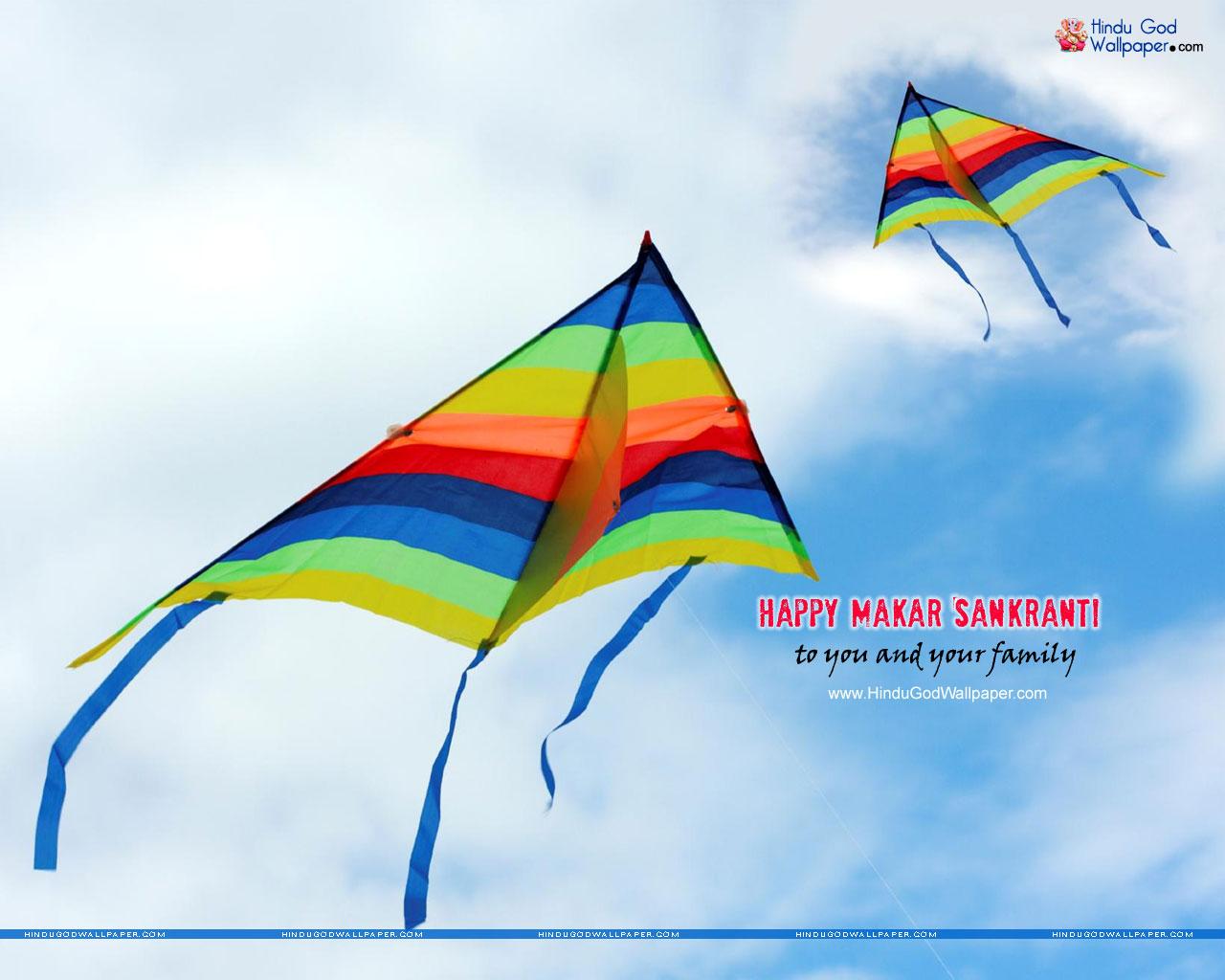 Makar Sankranti Kites Wallpaper