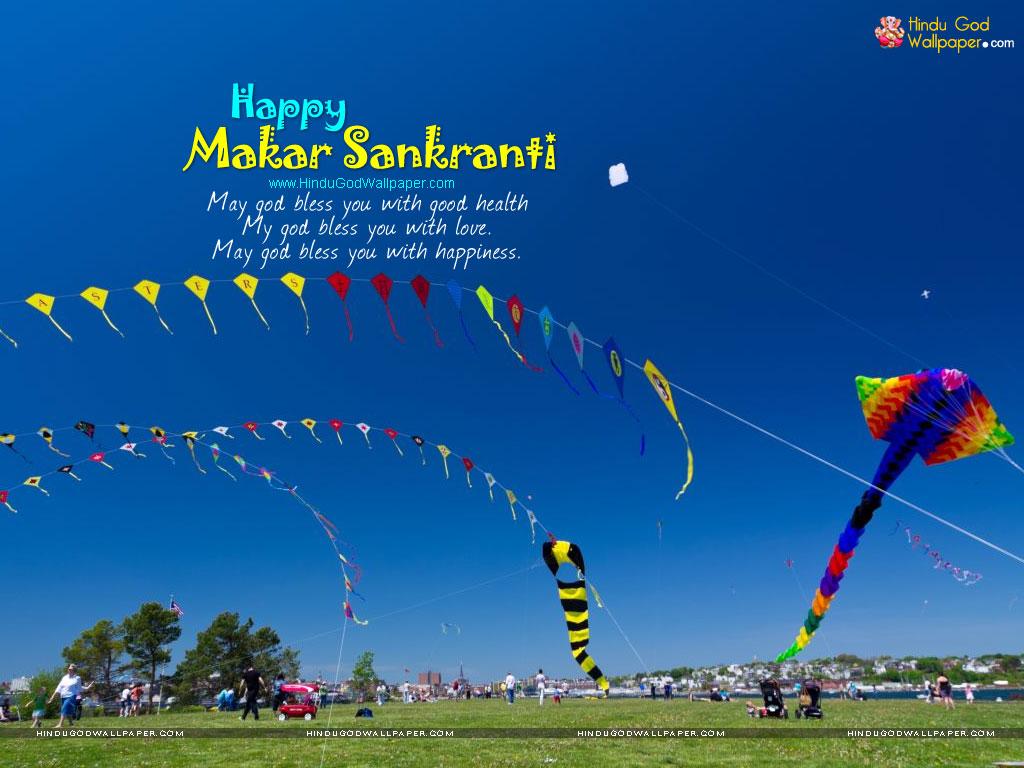 Makar Sankranti Festival Wallpapers