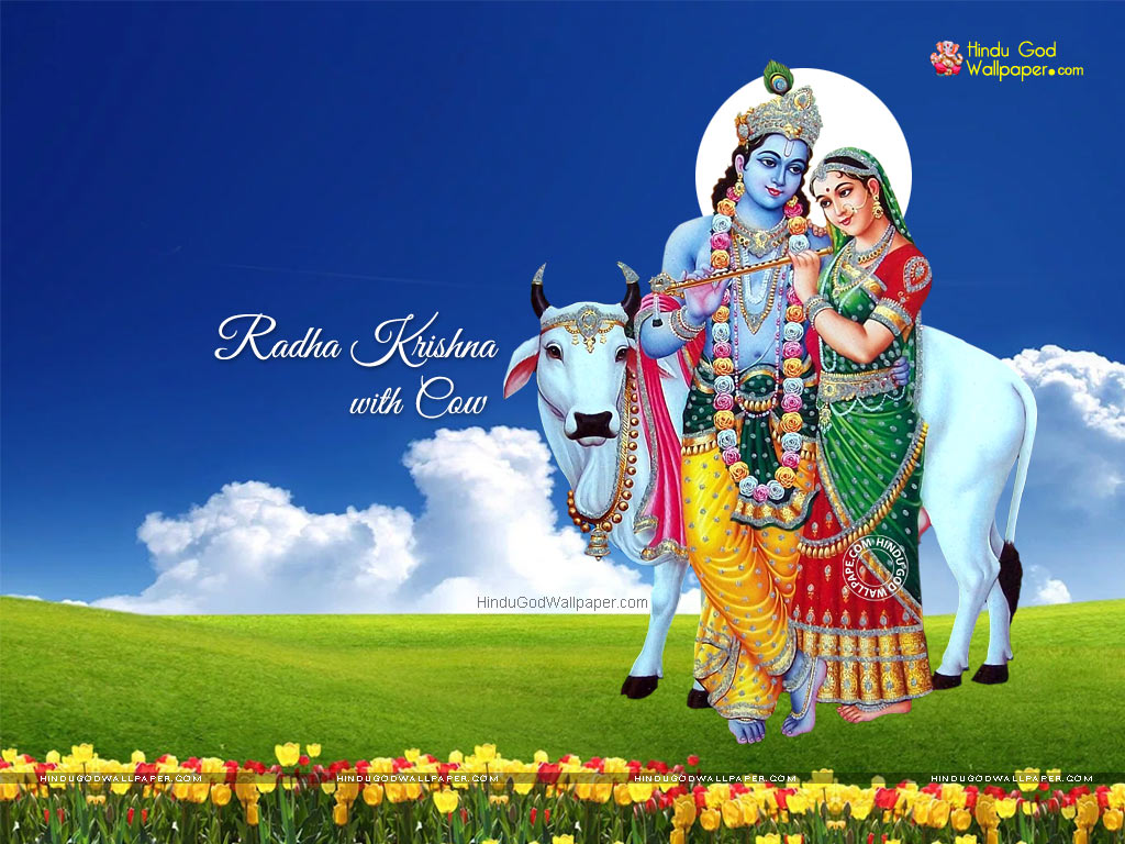 Radha Krishna with Cow Wallpaper