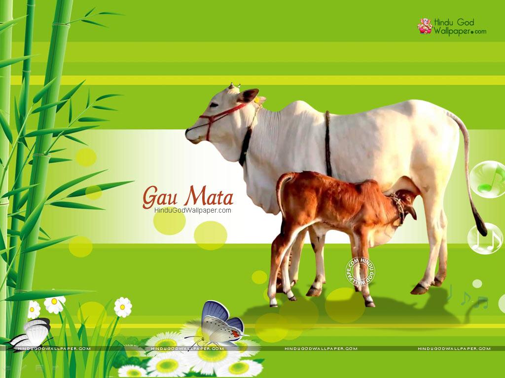 free download gomatha hd