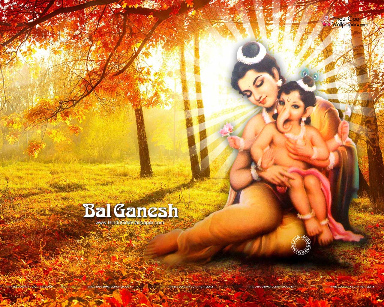 cute bal ganesh wallpaper