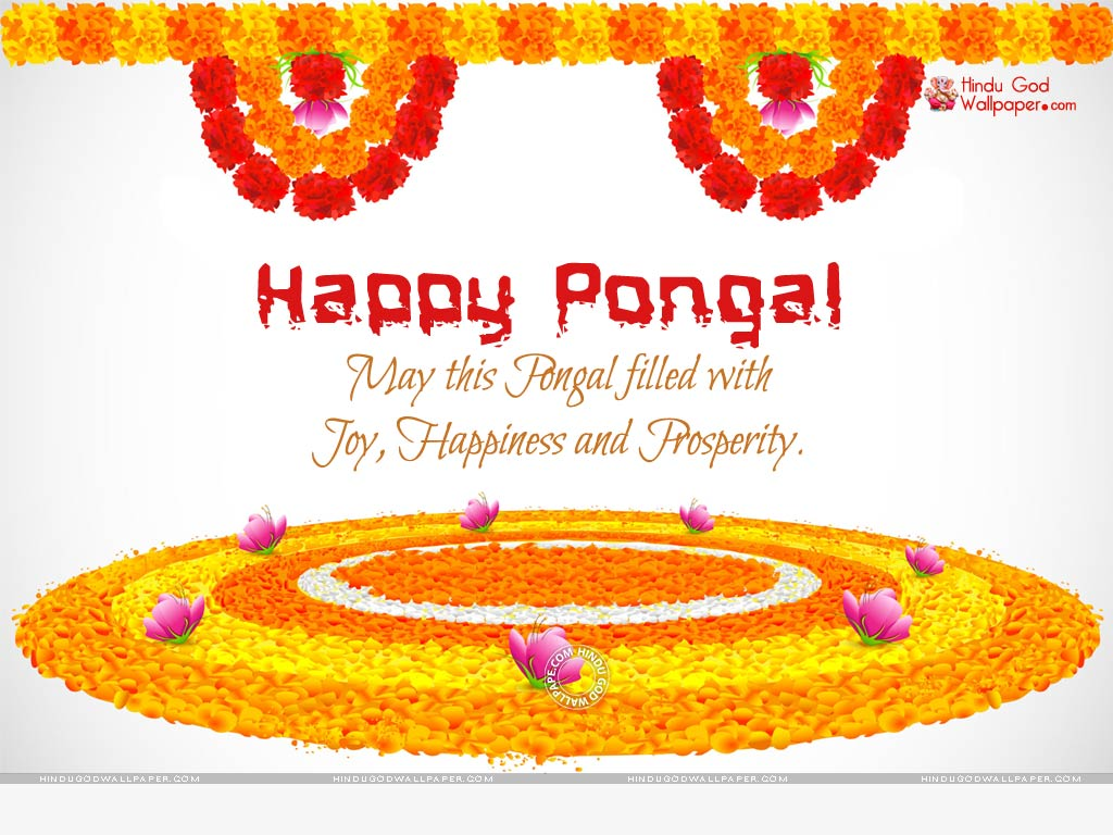 happy pongal wallpaper