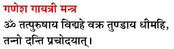 Gayatri Mantra For Different Gods In Hindi